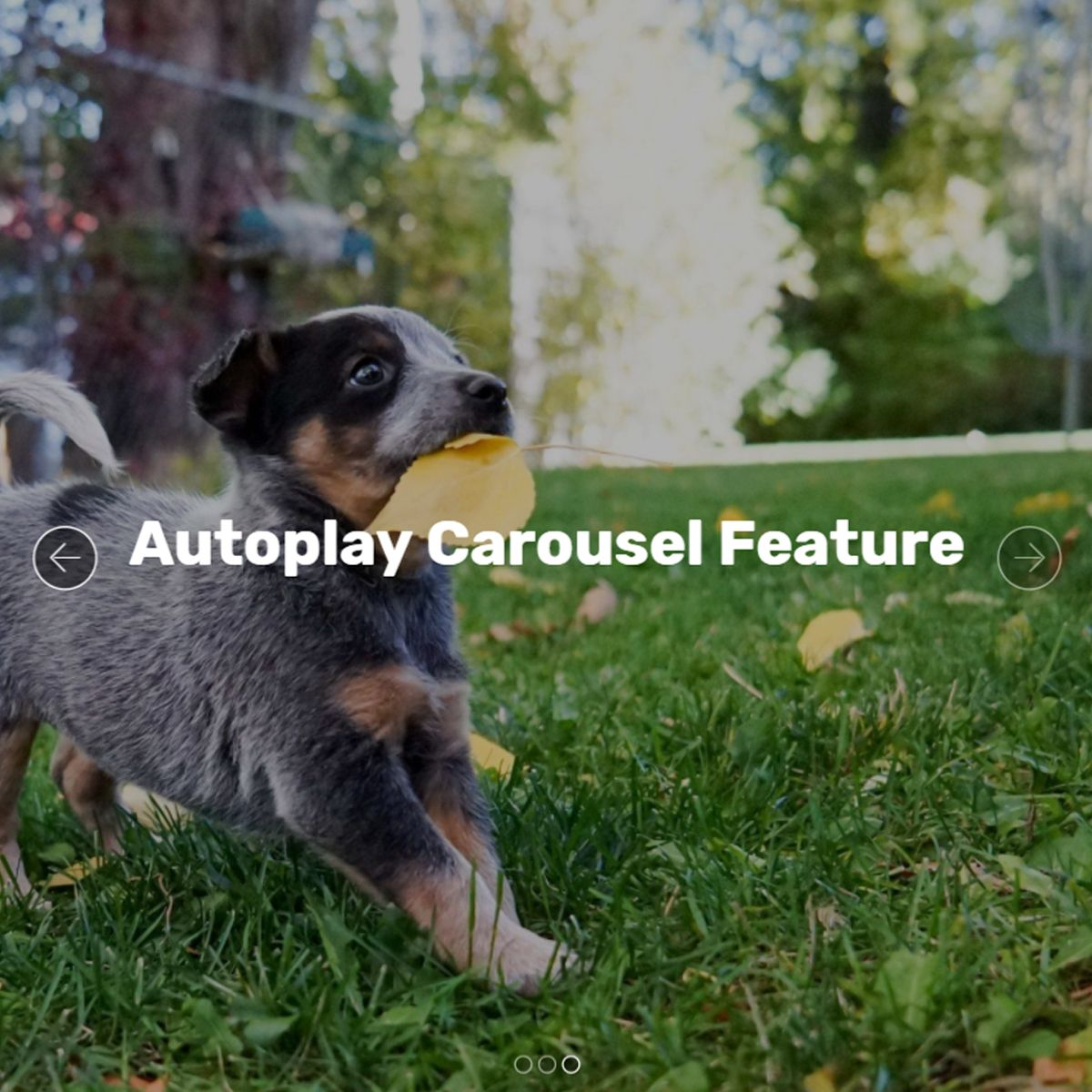 jQuery Bootstrap Picture Slideshow